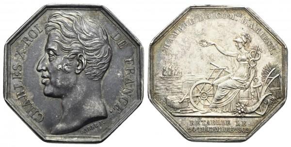 Frankreich - Amiens - Medaille
