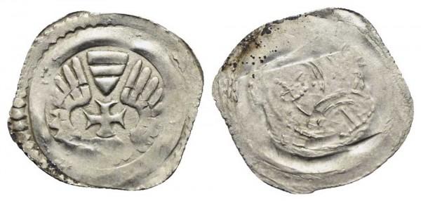 Münze-Grazer-Pfennig-Albrecht-I-VIA10733